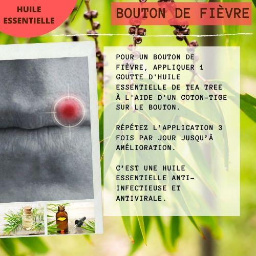 bouton de fièvre avec l'he d'arbre à thé (tea tree)