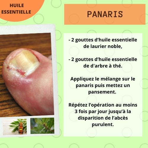 panaris he tea tree et laurier noble