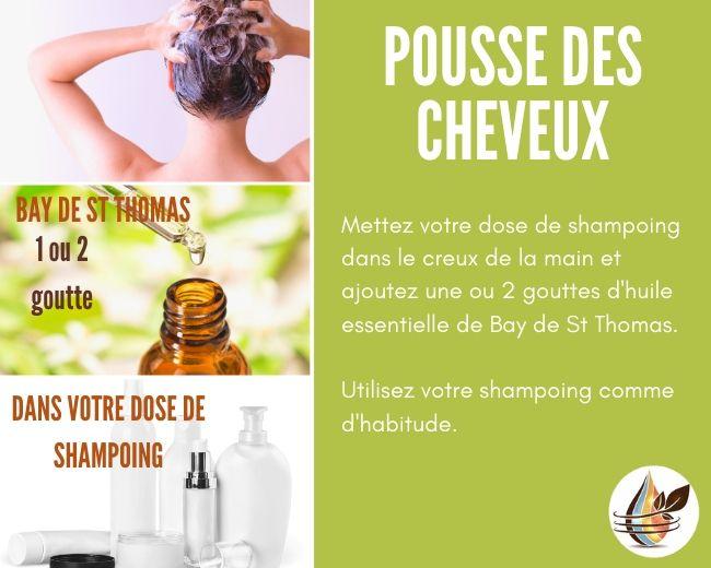huile essentielle de Bay de st thomas pour la pousse des cheveux