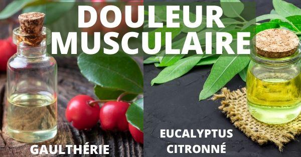 Huiles essentielles de gaulthérie et d'eucalyptus citronné pour des douleurs musculaires
