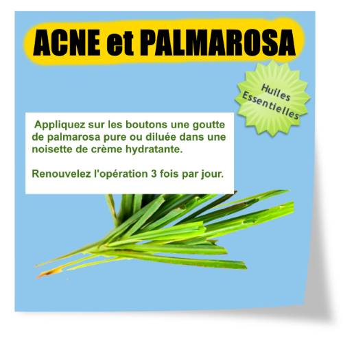 acné huile essentielle de palmarosa
