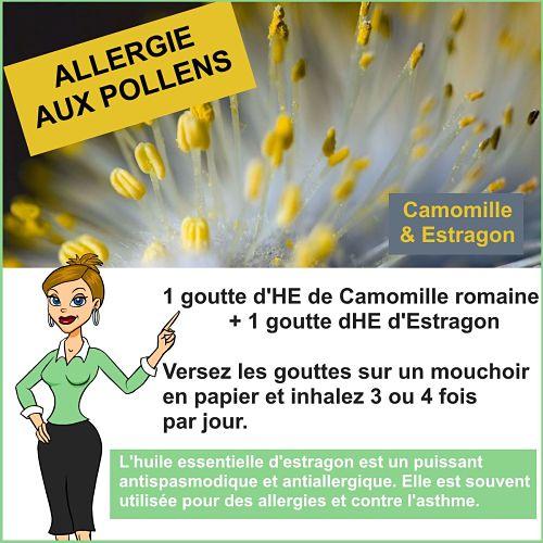 allergie pollen et estragon
