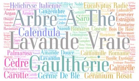 cloud-he-details-page-vente