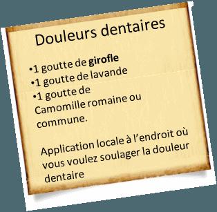 douleurs dentaires avec l'huile essentielle de girofle