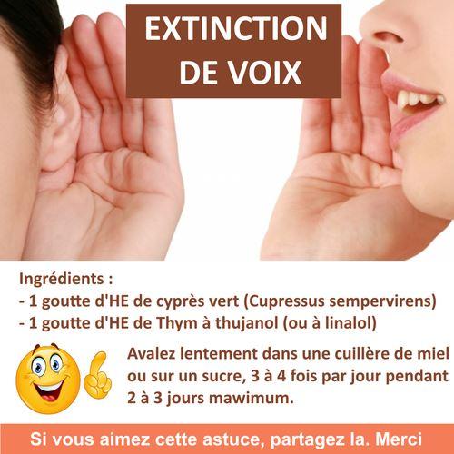 extinction de voix huile essentielle