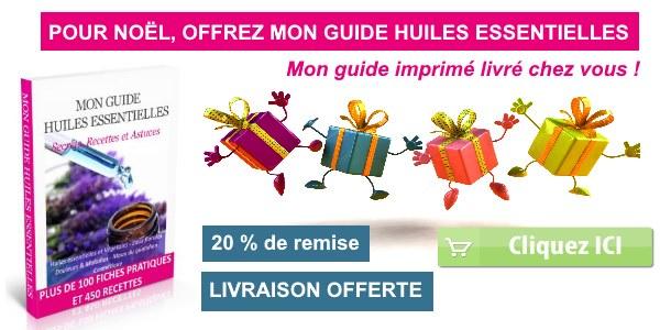 guide-imprime-noel-2