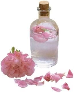 hydrolat de rose huile végétale