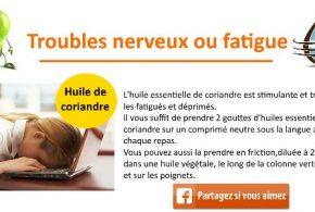 huile essentielle coriandre fatigue