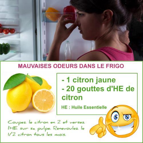 mauvaises doeurs dans le frgo citron
