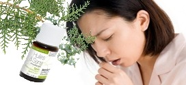 soigner toux sèche avec huile essentielle de cyprès