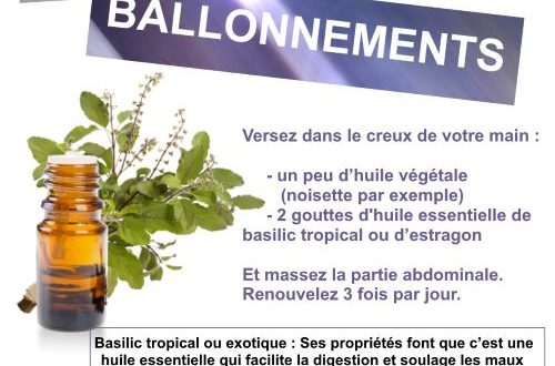 troubles digestifs basilic tropical