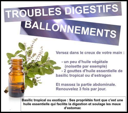 L'huile essentielle de basilic pour des troubles digestifs